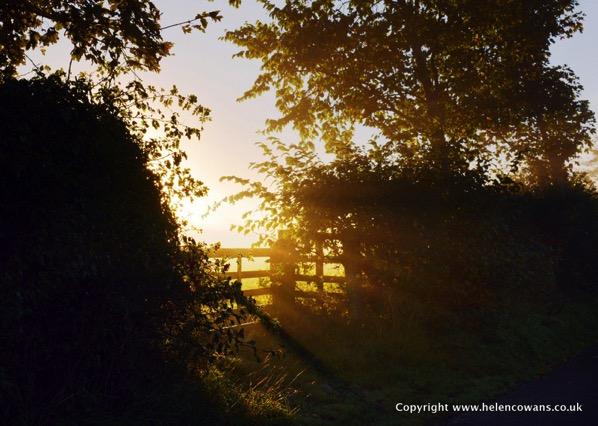 Sunlight-through-gate.jpg