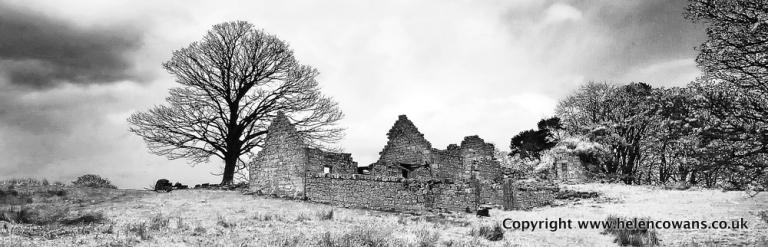 Blaewearie House cropped